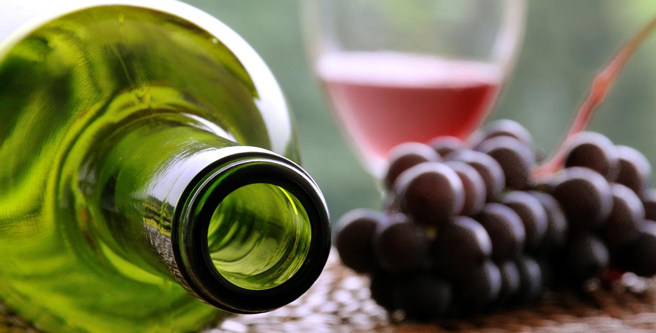 Weinseminar und Waldspezialitäten in Köln