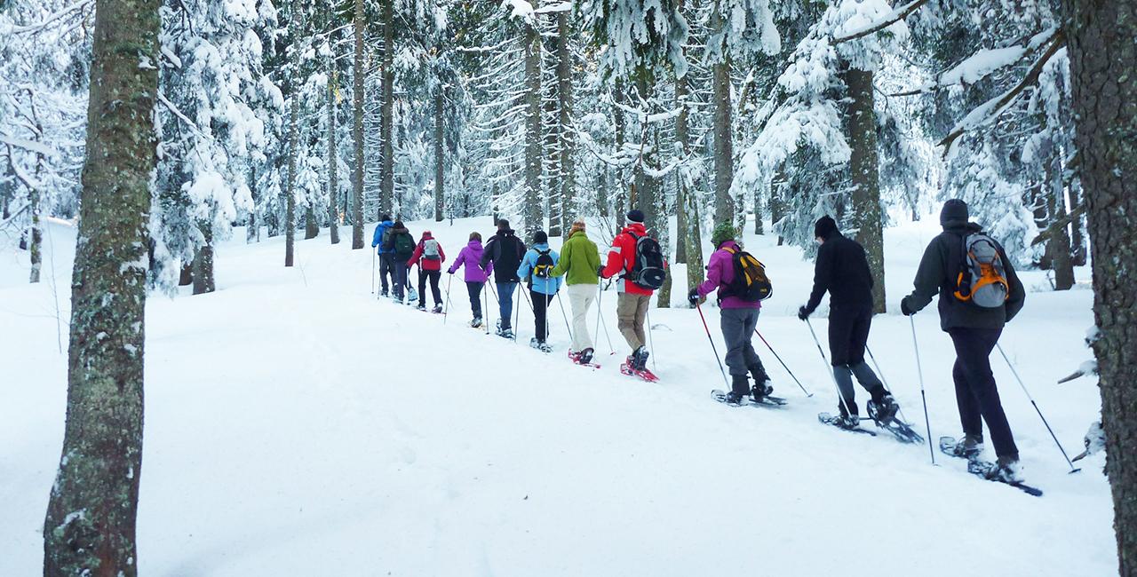 Schneeschuh Wanderung in Feldberg, Raum Freiburg