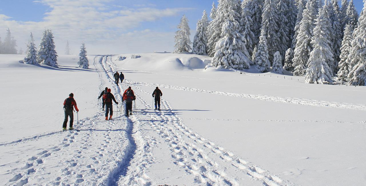 Schneeschuh Wanderung in Viechtach, Raum Regensburg in Bayern