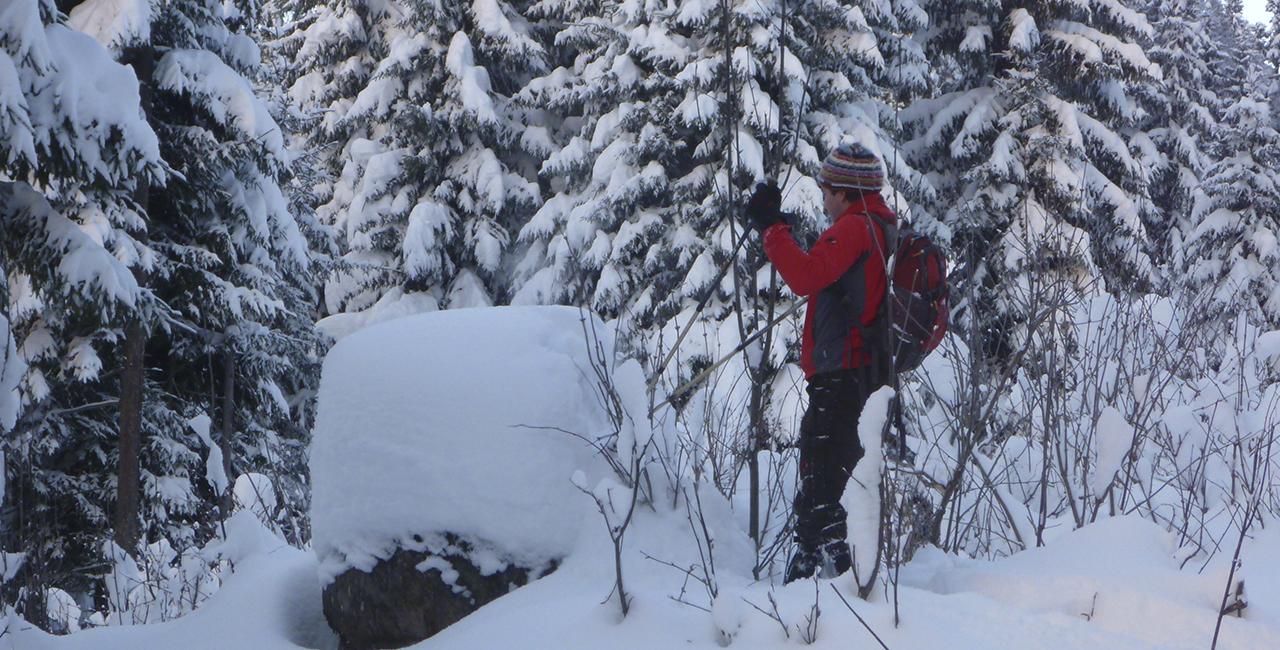 Schneeschuh Wanderung Schnuppertour in Oberstdorf, Allgäu