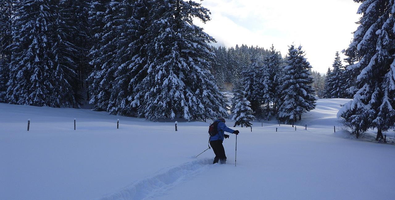Schneeschuh Wanderung Tagestour in Oberstdorf, Allgäu