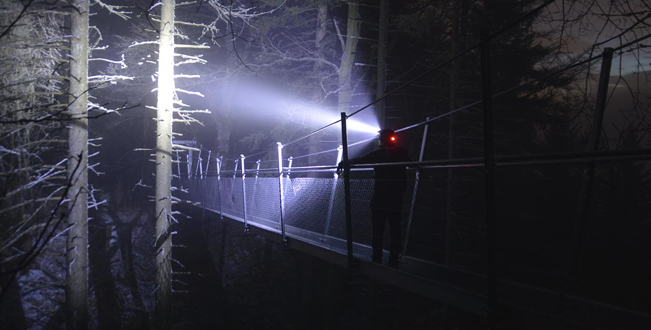 Nachtwanderung auf dem Seensteig zur Hornisgrinde, 1-6 Personen