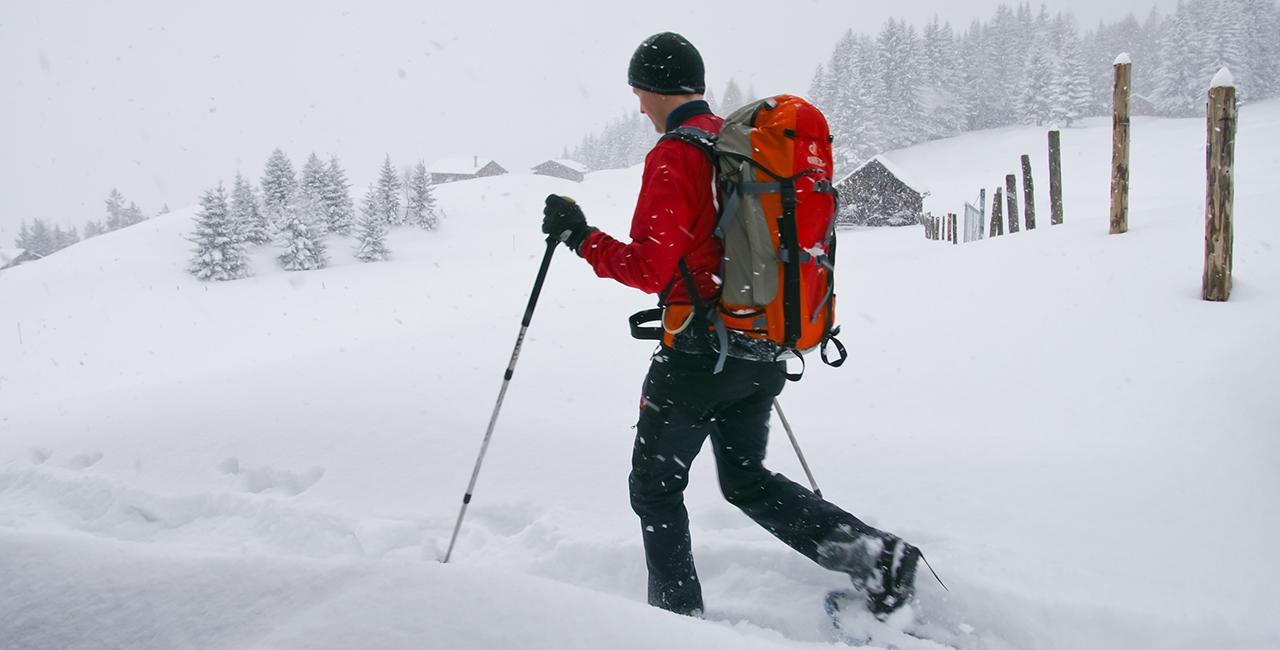 Winter Wildnis Wochenende Bad Malente