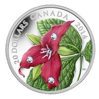 Kanada - 20 CAD Red Trillium 2014 - 1 Oz Silber