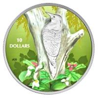 Kanada - 10 CAD Vögel in bunter Natur Goldspecht - Silbermünze
